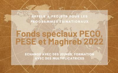 Les appels à projets de l'OFAJ pour les fonds spéciaux PECO, PESE et Maghreb de l'année 2022 sont en ligne !